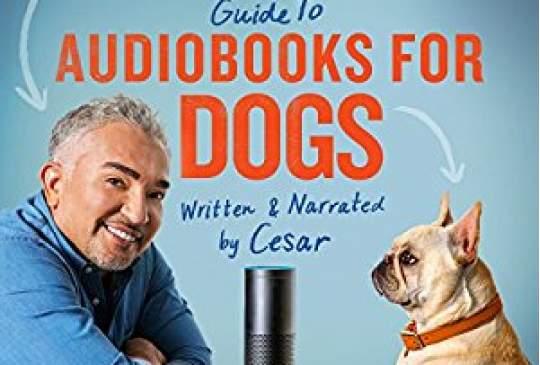 Amazon Alexa leest nu audioboeken voor je huisdier - voelen ze zich niet zo alleen